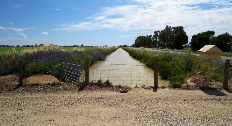 623 Logie Brae Road, Finley, NSW, 2713 - Image 12