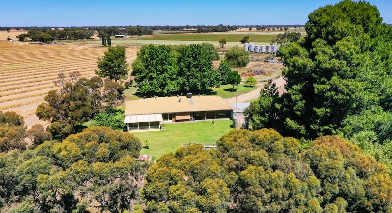 623 Logie Brae Road, Finley, NSW, 2713 - Image 2