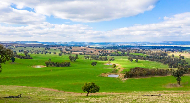 Aberfeldy Hume Highway, Holbrook, NSW, 2644 - Image 4