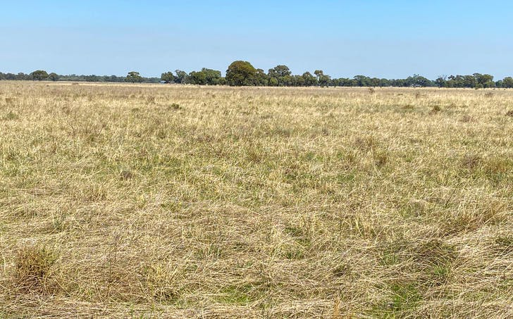 Lot 2 and 3 Lawrence Road, Deniliquin, NSW, 2710 - Image 1