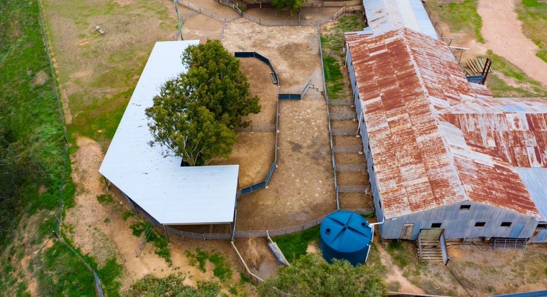 Aberfeldy Hume Highway, Holbrook, NSW, 2644 - Image 13