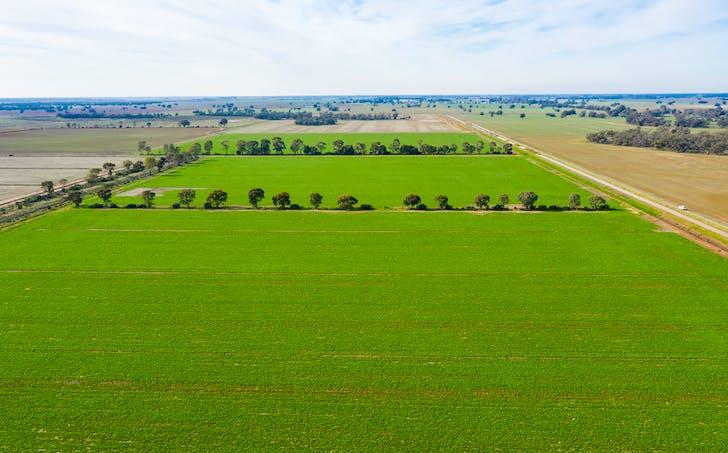 Deniliquin, NSW, 2710 - Image 1