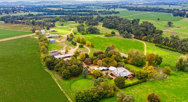 Aberfeldy Hume Highway, Holbrook, NSW, 2644 - Image 2