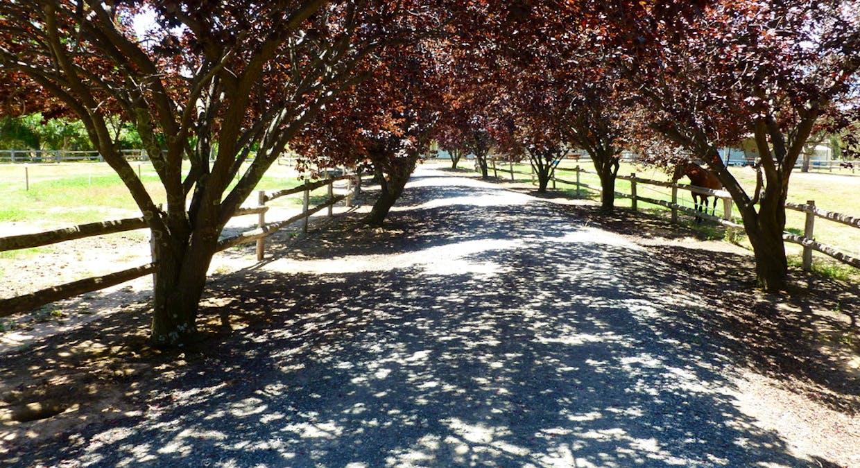71 Forrest Lane, Chiltern, VIC, 3683 - Image 7