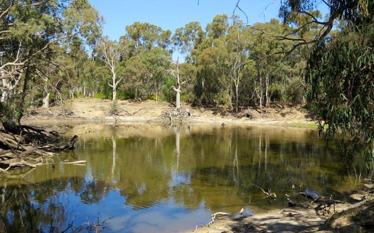 27 Vartus Drive, Deniliquin, NSW, 2710 - Image 1