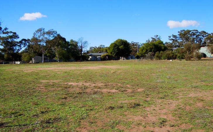 113 Pine Hill Road, Narrandera, NSW, 2700 - Image 1