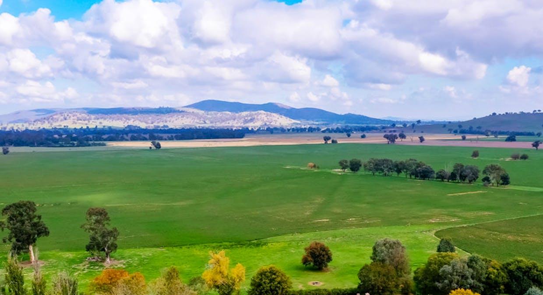 Aberfeldy Hume Highway, Holbrook, NSW, 2644 - Image 5