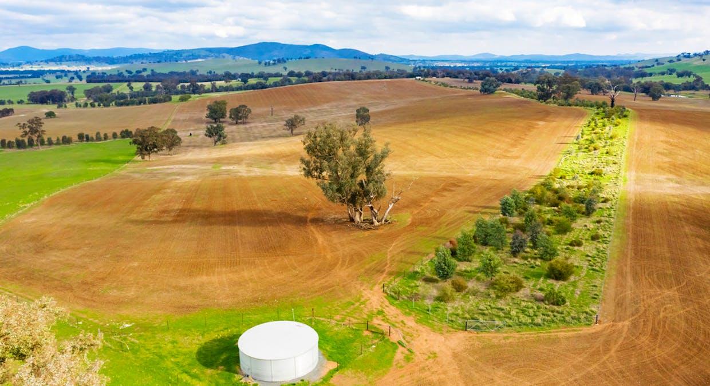 Aberfeldy Hume Highway, Holbrook, NSW, 2644 - Image 6