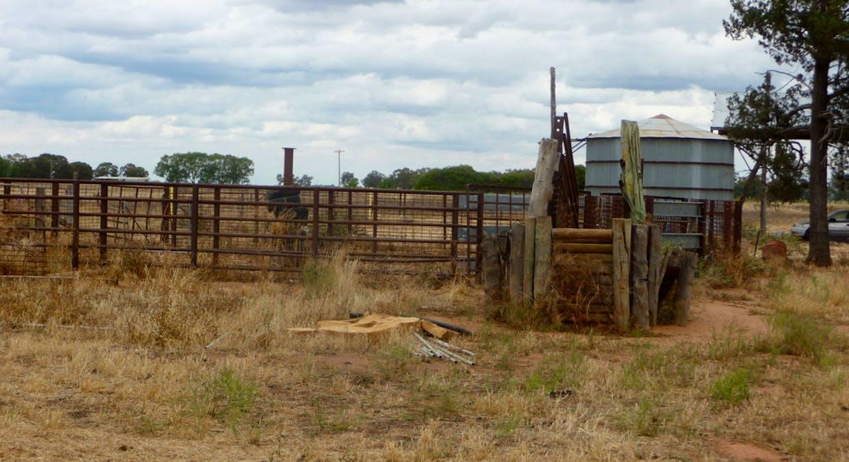 670 Lawlors Road, Finley, NSW, 2713 - Image 23