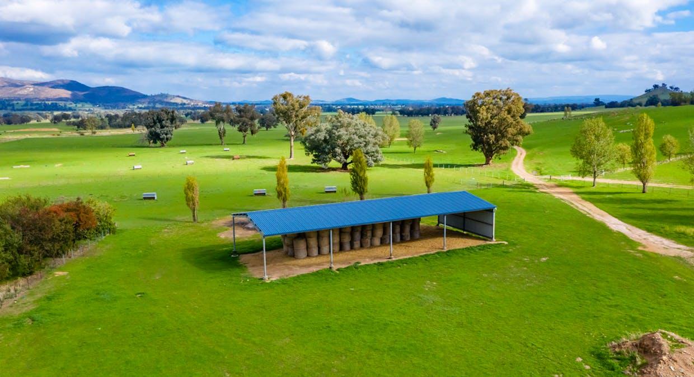 Aberfeldy Hume Highway, Holbrook, NSW, 2644 - Image 8