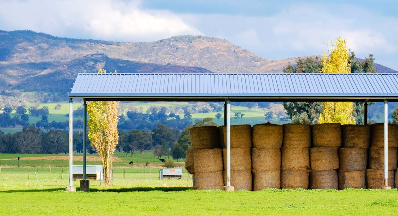Aberfeldy Hume Highway, Holbrook, NSW, 2644 - Image 9