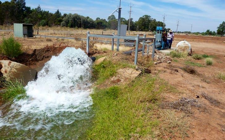 Farm 166 Bull Road, Coleambally, NSW, 2707 - Image 1