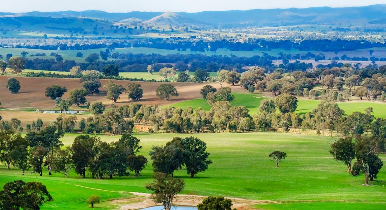 Aberfeldy Hume Highway, Holbrook, NSW, 2644 - Image 1