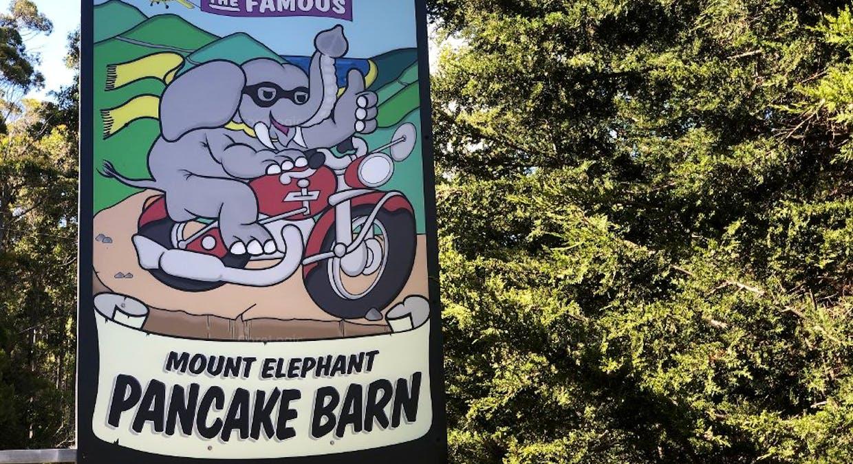 824 Elephant Pass Road, St Marys, TAS, 7215 - Image 23