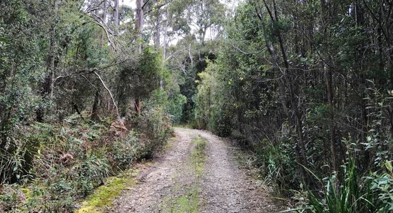 691A Brown Mountain Road, Karoola, TAS, 7267 - Image 11