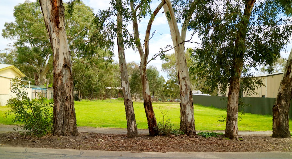4A Nottage Road, Meadows, SA, 5201 - Image 3