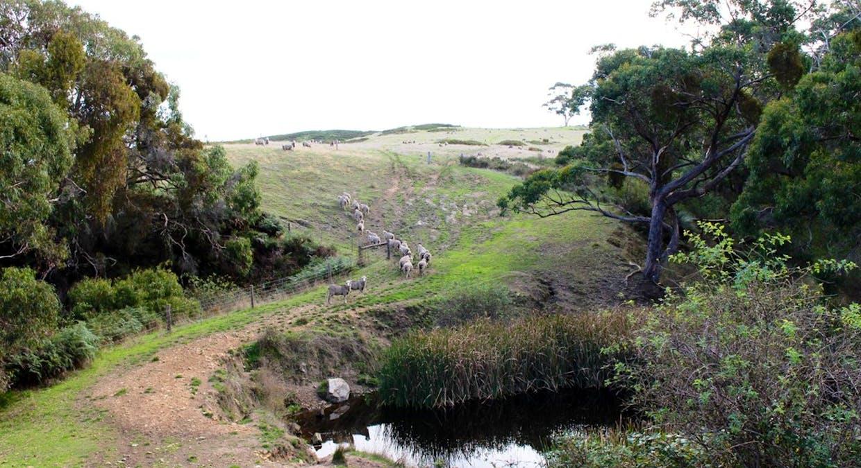 A23 Strangways Road, Inman Valley, SA, 5211 - Image 22