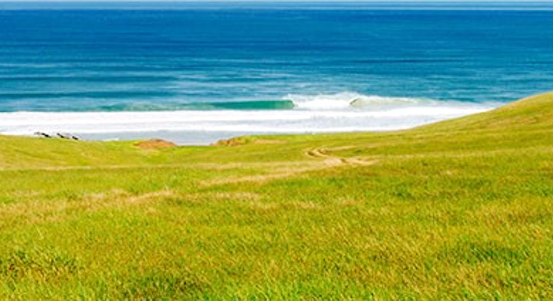 'Sheepies' Coolawang Beach Rd, Waitpinga, SA, 5211 - Image 17