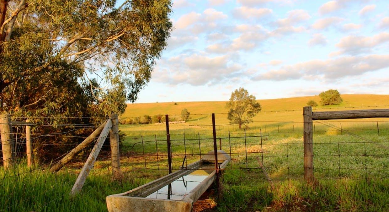 140 Mine Flat Road, Strathalbyn, SA, 5255 - Image 6
