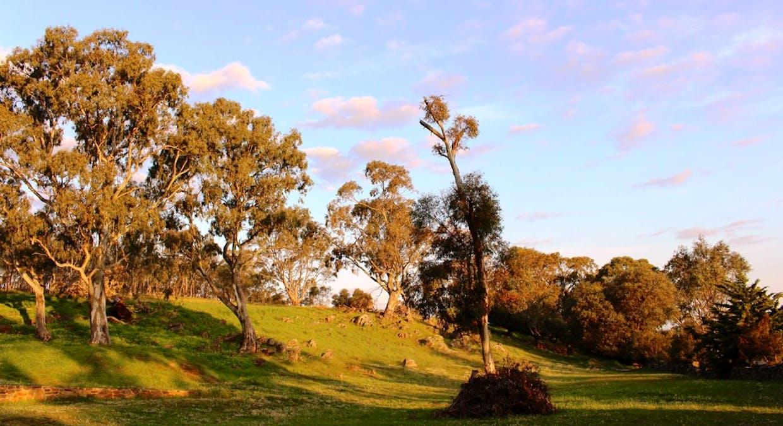 140 Mine Flat Road, Strathalbyn, SA, 5255 - Image 9