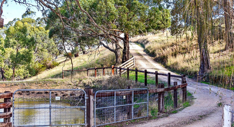 88 Rosies Road, Hindmarsh Valley, SA, 5211 - Image 3