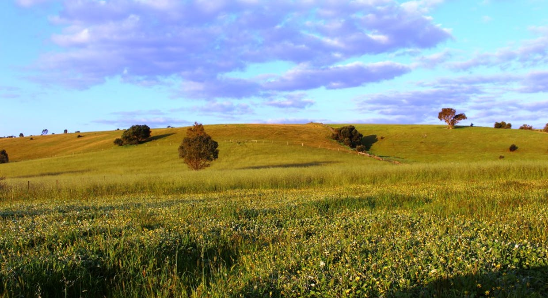 140 Mine Flat Road, Strathalbyn, SA, 5255 - Image 8