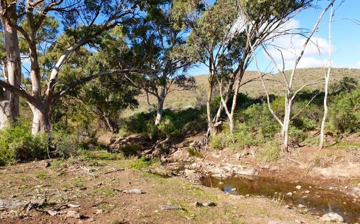 Sec212,215and216 Herde Rd, Nectar Brook, SA, 5495 - Image 1