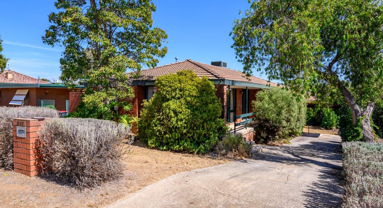 517 Hill Street, West Albury, NSW, 2640 - Image 1
