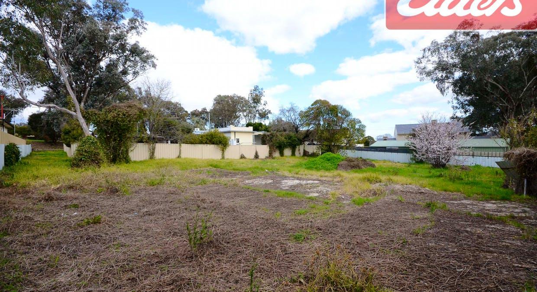 866 Padman Drive, West Albury, NSW, 2640 - Image 4