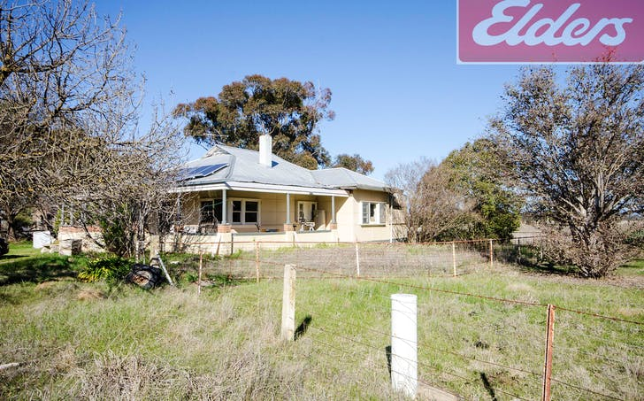 4064 and 4100 Olympic Highway, Henty, NSW, 2658 - Image 1
