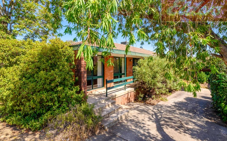 517 Hill Street, West Albury, NSW, 2640 - Image 1