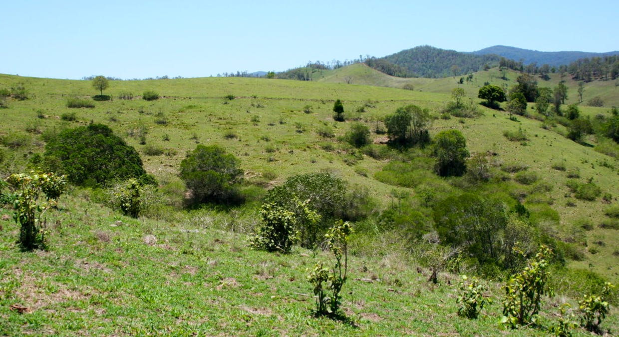 Lot 2 D'aguilar Highway, Winya, QLD, 4515 - Image 8