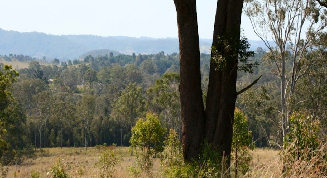 159 Mccabe Road, Stanmore, QLD, 4514 - Image 5