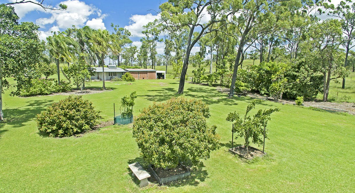 445 Cobraball Road, Cobraball, QLD, 4703 - Image 24