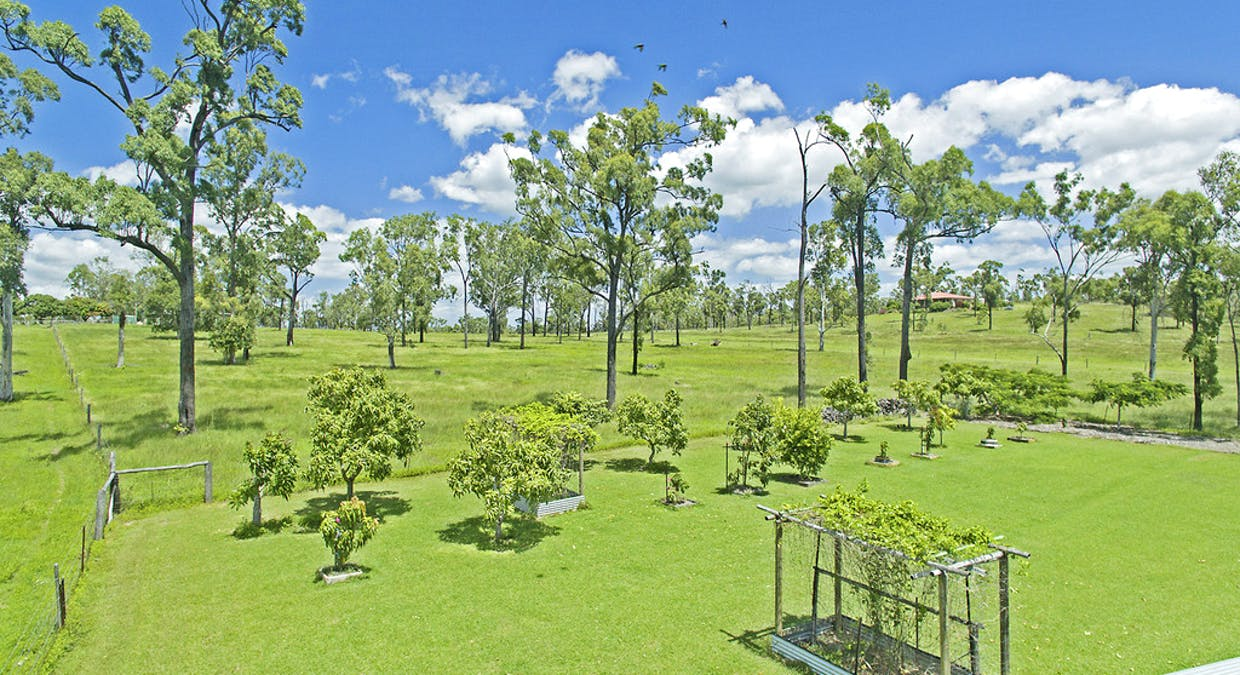 445 Cobraball Road, Cobraball, QLD, 4703 - Image 26