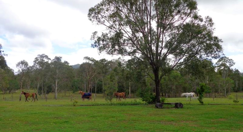 430 Bauple Woolooga Road, Gundiah, QLD, 4650 - Image 27