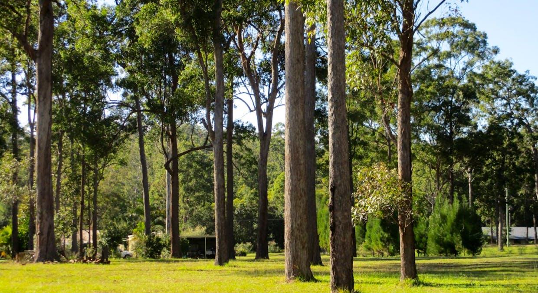 Lot 17 Martyn Road, Bauple, QLD, 4650 - Image 15