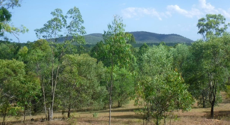 Lot 379 Arborten Road, Glenwood, QLD, 4570 - Image 14