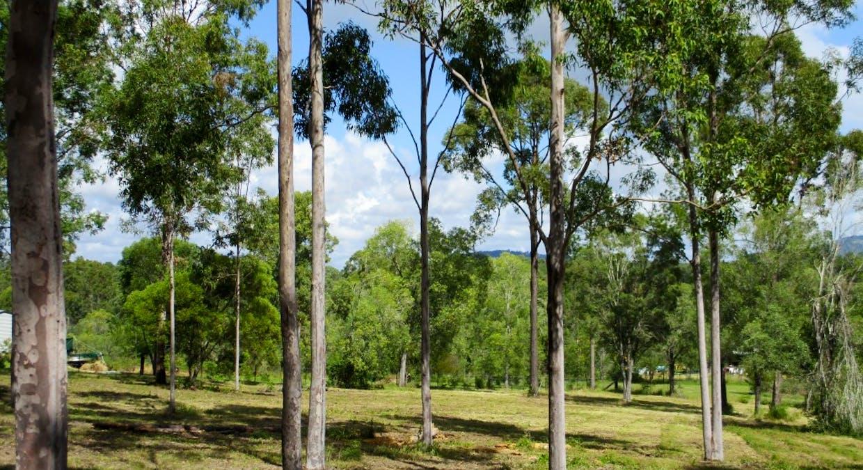Lot 221 Beckmanns Road, Glenwood, QLD, 4570 - Image 5