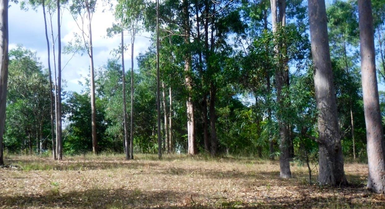 Lot 379 Arborten Road, Glenwood, QLD, 4570 - Image 13