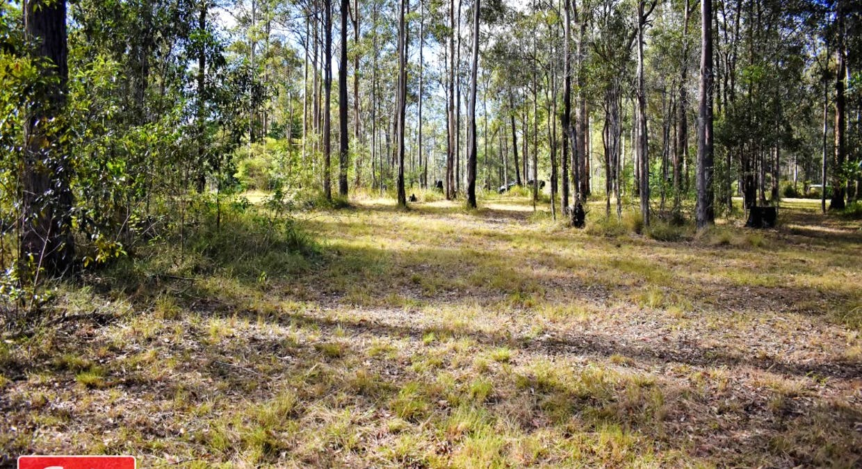 Lot 101 Deephouse Road, Bauple, QLD, 4650 - Image 1