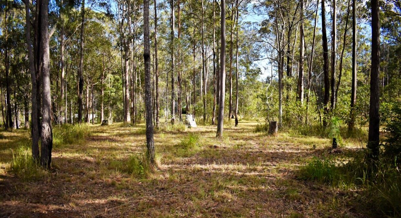 Lot 101 Deephouse Road, Bauple, QLD, 4650 - Image 3