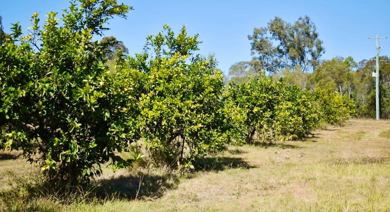 330 Anderleigh Road, Gunalda, QLD, 4570 - Image 6