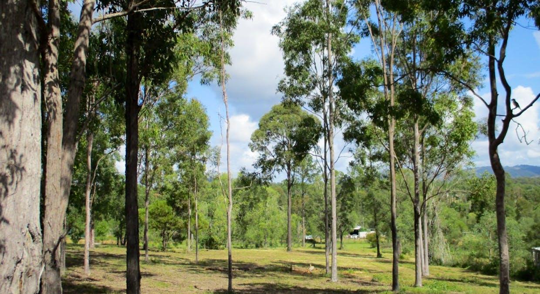 Lot 221 Beckmanns Road, Glenwood, QLD, 4570 - Image 6