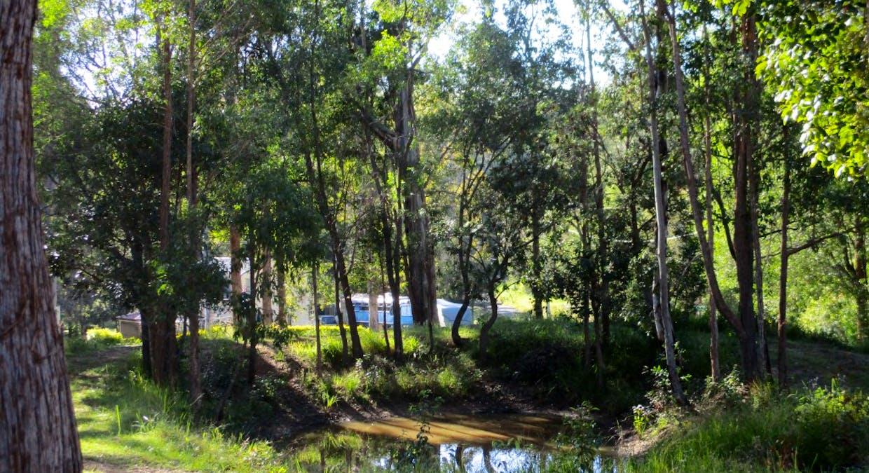 Lot 17 Martyn Road, Bauple, QLD, 4650 - Image 8