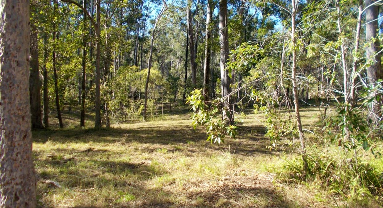 Lot 190 Arbortwentynine Road, Glenwood, QLD, 4570 - Image 2