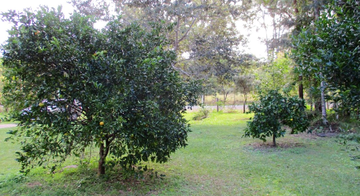 115 Faine Road, Bauple Forest, QLD, 4650 - Image 17