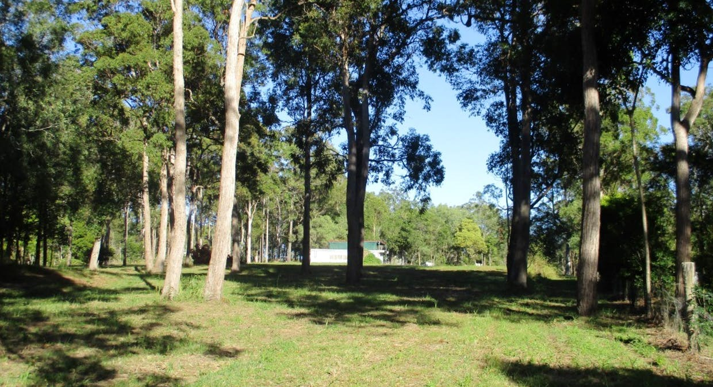 Lot 17 Martyn Road, Bauple, QLD, 4650 - Image 1