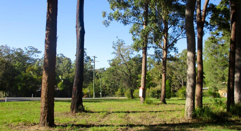 Lot 17 Martyn Road, Bauple, QLD, 4650 - Image 13