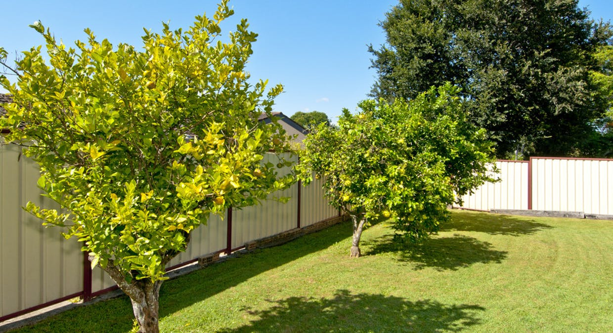 322 Kingston Road, Slacks Creek, QLD, 4127 - Image 15